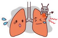 What happens if I inhale Asbestos?