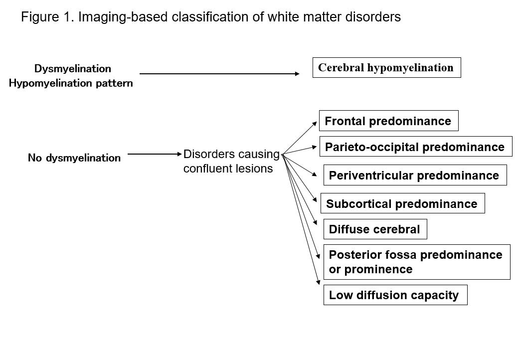 Common Cerebral White Matter >> Diagnostic Imaging Of White Matter Abnormalities Congenital