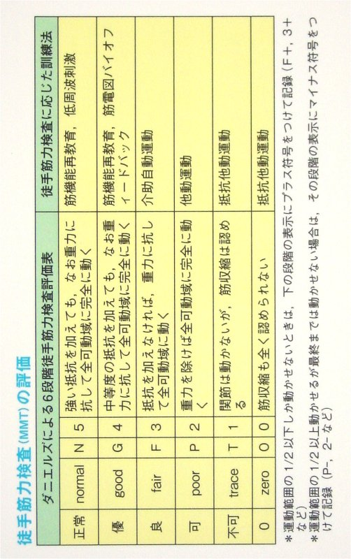 u5f92 u624b u7b4b u529b u691c u67fb hand strength manual muscle strength testing of the hand muscles japaneseclass jp Manual Testing Jobs manual testing discussion forum