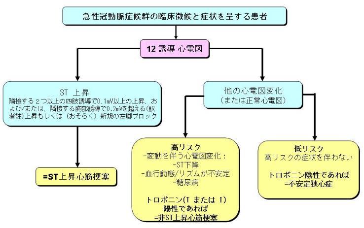 ERC心肺蘇生法ガイドライン2005 ...