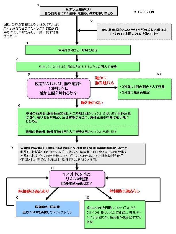 AHA ガイドライン2005 第11部 小児の一次救命処置(PBLS)