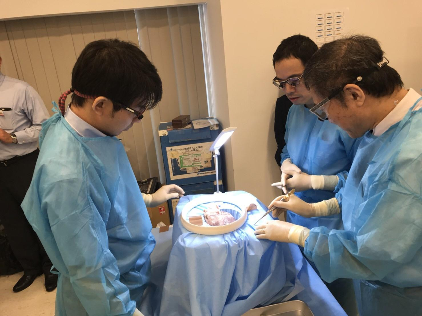 時には手を止めて、しっかり解剖、知識を確認できることも wet lab の醍醐味です。